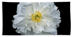 White Peony Hand Towel by Charles Harden