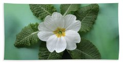 White Primrose Hand Towel by Terence Davis