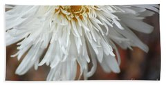 White Pure Flower Hand Towel by Donna Bentley
