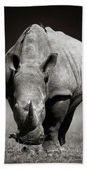White Rhinoceros  In Due-tone Bath Towel