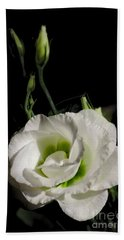 White Rose On Black Bath Towel