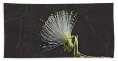 White Shaving Brush Pseudobombax Flower Hand Towel