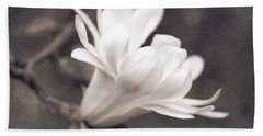 Hand Towel featuring the photograph  White Star Magnolia Blossom by Jennie Marie Schell
