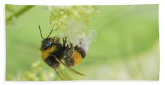 White-tailed Bumblebee - Bombus Lucorum Hand Towel