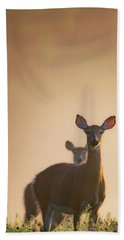 White-tailed Deer 2016 Hand Towel