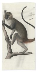 White Throated Guenon, Cercopithecus Albogularis Erythrarchus Bath Towel