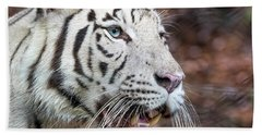White Tiger 1 Hand Towel