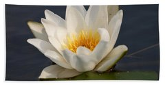 Hand Towel featuring the photograph White Waterlily 1 by Jouko Lehto