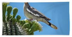 Hand Towel featuring the photograph White Winged Dove On Cactus Flower by Penny Lisowski