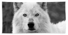 White Wolf Encounter Hand Towel