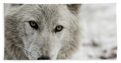 White Wolf II Hand Towel by Brad Allen Fine Art