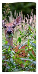 Whitetail Doe Hand Towel