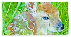Whitetailed Deer Fawn Bath Towel