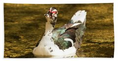 Who Me Wildlife Art By Kaylyn Franks Hand Towel