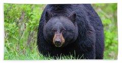 Wild Black Bear Hand Towel