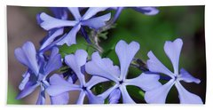 Hand Towel featuring the photograph Wild Blue Phlox Dspf0392 by Gerry Gantt