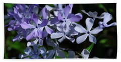 Bath Towel featuring the photograph Wild Blue Phlox Dspf0395 by Gerry Gantt
