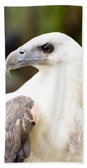 Bath Towel featuring the photograph Wild Eagle by Jorgo Photography - Wall Art Gallery