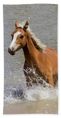 Wild Horse Splashing At The Water Hole Hand Towel