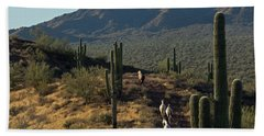 Wild Horses Of The Sonoran Desert Hand Towel