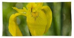 Wild Yellow Iris Hand Towel