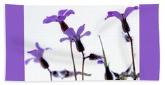 Wild Knotted Cranesbill Hand Towel