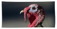 Wild Merriams Turkey Portrait  Bath Towel