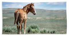 Wild Mustang Colt Of Sand Wash Basin Hand Towel