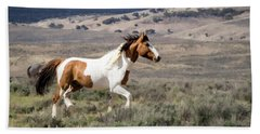 Wild Mustang Stallion On The Move In Sand Wash Basin Hand Towel