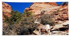Wild Ram At Zion Hand Towel