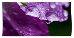 Bath Towel featuring the photograph Wild Rose Droplet by Darcy Michaelchuk