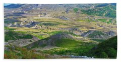Wildflowers And Mt. St, Helens Bath Towel by Ansel Price