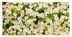 Hand Towel featuring the photograph Wildflowers by Holly Kempe