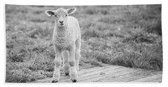 Williamsburg Lamb Hand Towel