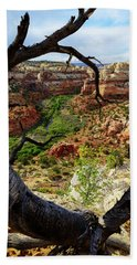 Hand Towel featuring the photograph Window by Chad Dutson
