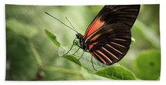 Wings Of The Tropics Butterfly Bath Towel