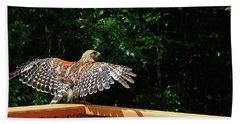 Wingspan Of Hawk Hand Towel
