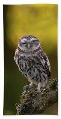 Winking Little Owl Hand Towel
