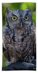 Winston Wildlife Art By Kaylyn Franks Hand Towel