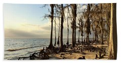 Winter At Fontainebleau State Park, Lake Pontchartrain, La Hand Towel