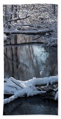 Winter At The Brook Hand Towel
