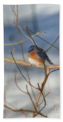 Winter Bluebird Art Hand Towel by Smilin Eyes  Treasures