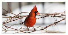 Winter Cardinal 12 Bath Towel