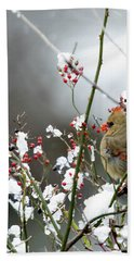 Winter Cardinal Hand Towel
