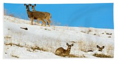 Bath Towel featuring the photograph Winter Deer by Mike Dawson