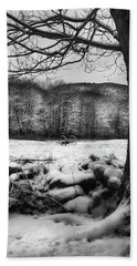 Bath Towel featuring the photograph Winter Dreary by Bill Wakeley
