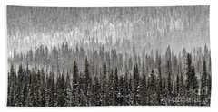 Winter Forest Hand Towel by Brad Allen Fine Art