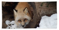 Bath Towel featuring the photograph Winter Fox by Richard Bryce and Family