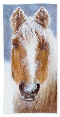 Winter Horse Portrait Hand Towel