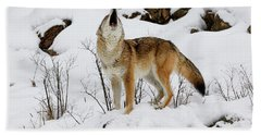 Winter Howl Hand Towel by Steve McKinzie